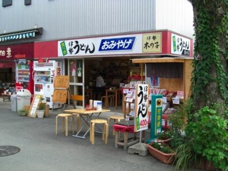 091031木の子.JPG